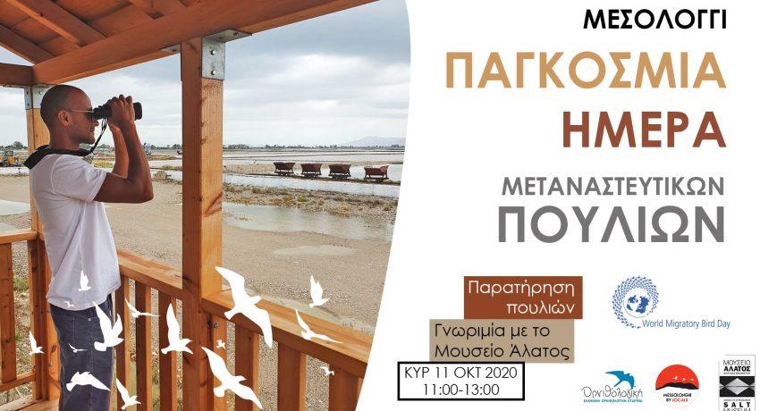 11-ΟΚΤ-2020-COVER
