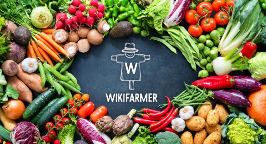 wikifarmer-3-575x323