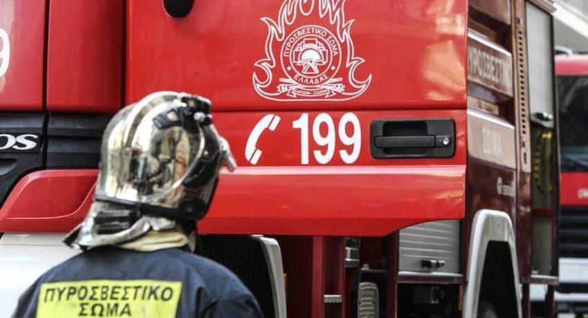 pirosvestiki-1-850x460