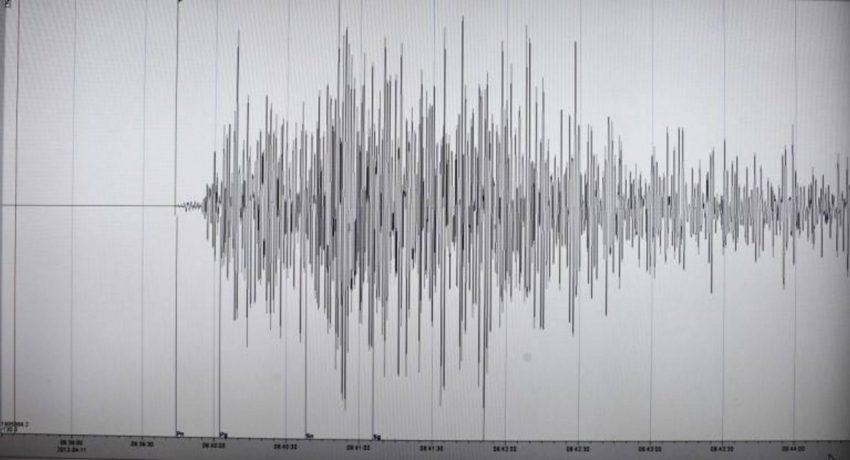 seismografos_1_6_2019